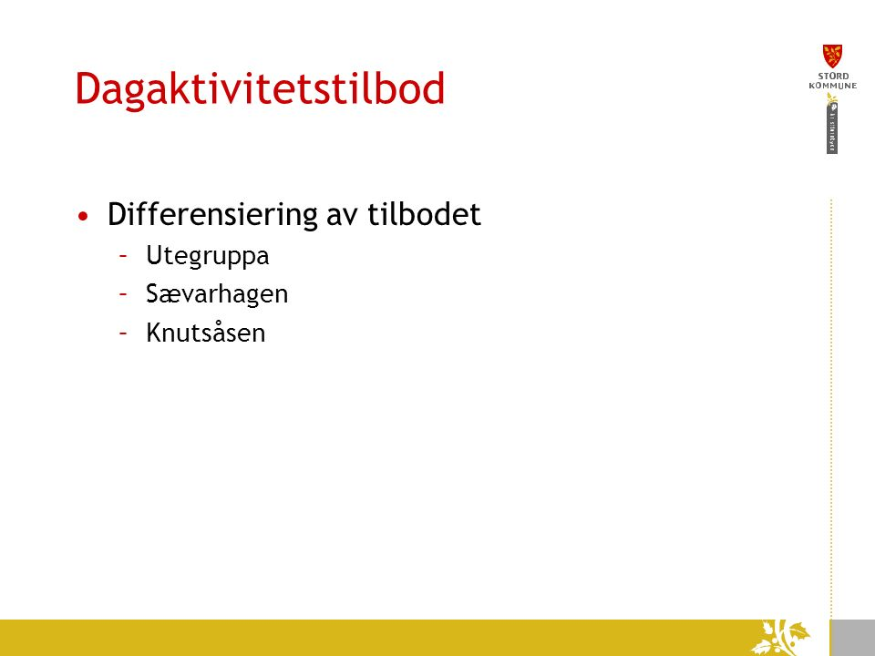 Dagaktivitetstilbod Differensiering av tilbodet –Utegruppa –Sævarhagen –Knutsåsen