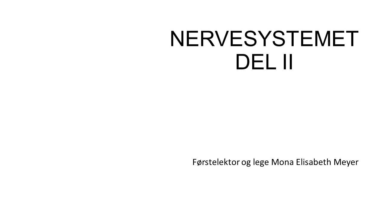 NERVESYSTEMET DEL II Førstelektor og lege Mona Elisabeth Meyer