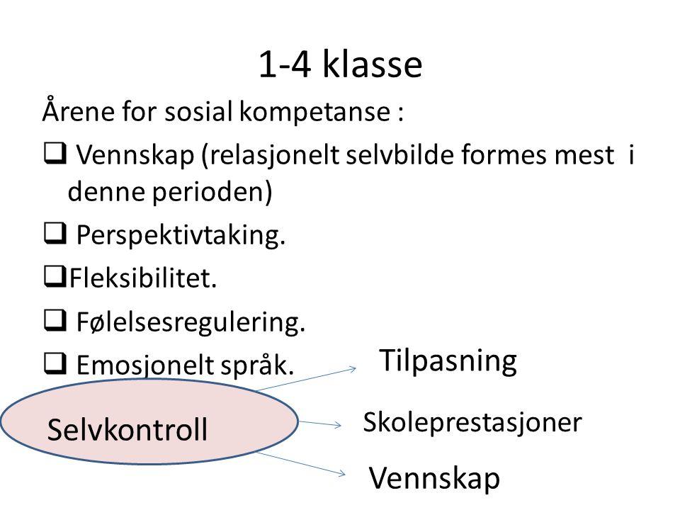 1-4 klasse Årene for sosial kompetanse :  Vennskap (relasjonelt selvbilde formes mest i denne perioden)  Perspektivtaking.  Fleksibilitet.  Følels
