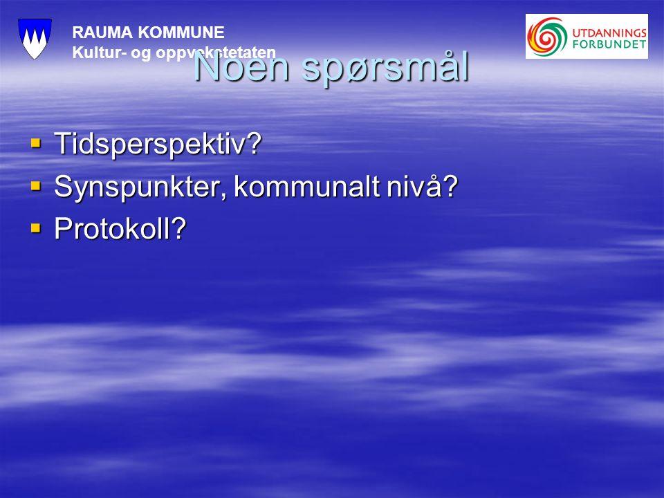 RAUMA KOMMUNE Kultur- og oppvekstetaten Noen spørsmål  Tidsperspektiv.