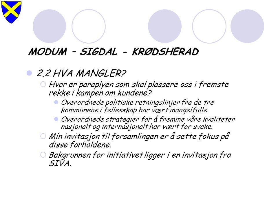 MODUM – SIGDAL - KRØDSHERAD 2.2 HVA MANGLER.
