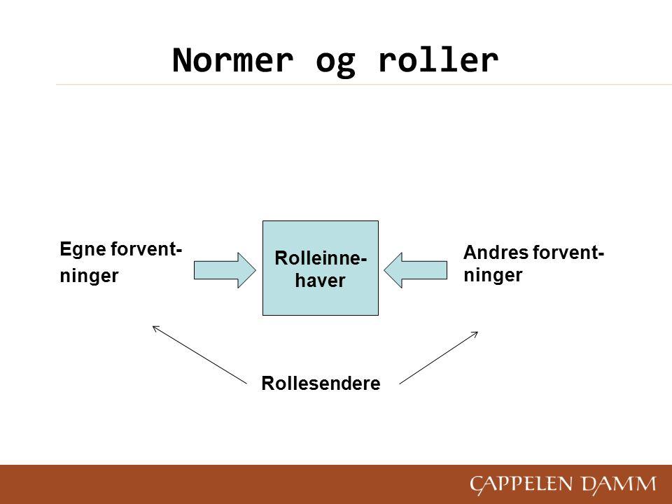 Normer og roller Egne forvent- ninger Rollesendere Rolleinne- haver Andres forvent- ninger