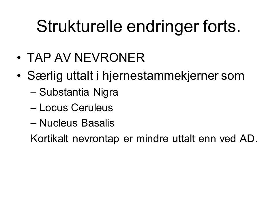 NEVROKJEMI Redusert nivå av ACh i hjernebarken (mer uttalt enn ved AD) Redusert dopamin (DA) i striatum pga nevrodegenrasjon i subst.nigra (mindre enn ved parkinsons sykdom(PD)).