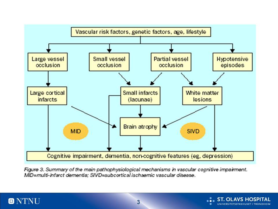 24 Skille AD og multiinfarktdemens < 4 poeng sannsynlig AD > 7 poeng sannsynlig VaD symptomscore Plutselig debut2 Trinnvis forverring1 Fluktuerende forløp2 Nattlig forvirring1 Relativ bevaring av personlighet 1 Depresjon1 Somatiske klager1 Emosjonell inkontinens1 Anamnese på hypertensjon 1 Anamnese på slag2 Assosiert atherosclerose1 Fokale nevrologiske symptomer 2 Fokale nevrologiske funn2 Hachinsky ischemic score