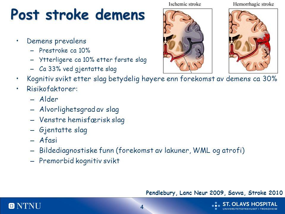 25 Subcortical vascular dementia.I. a.