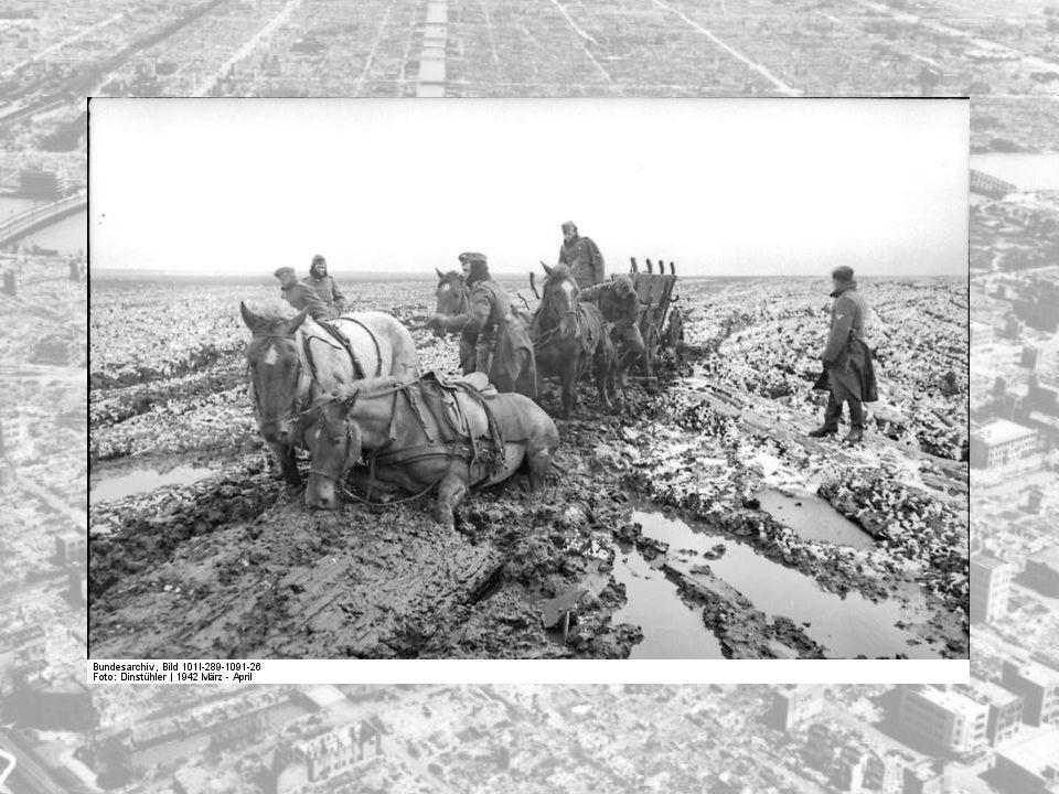 De tyske forsyningslinjene ble stadig lengre, veiene var dårlige og en viss utmatting begynte å gjøre seg gjeldende i de tyske rekkene.