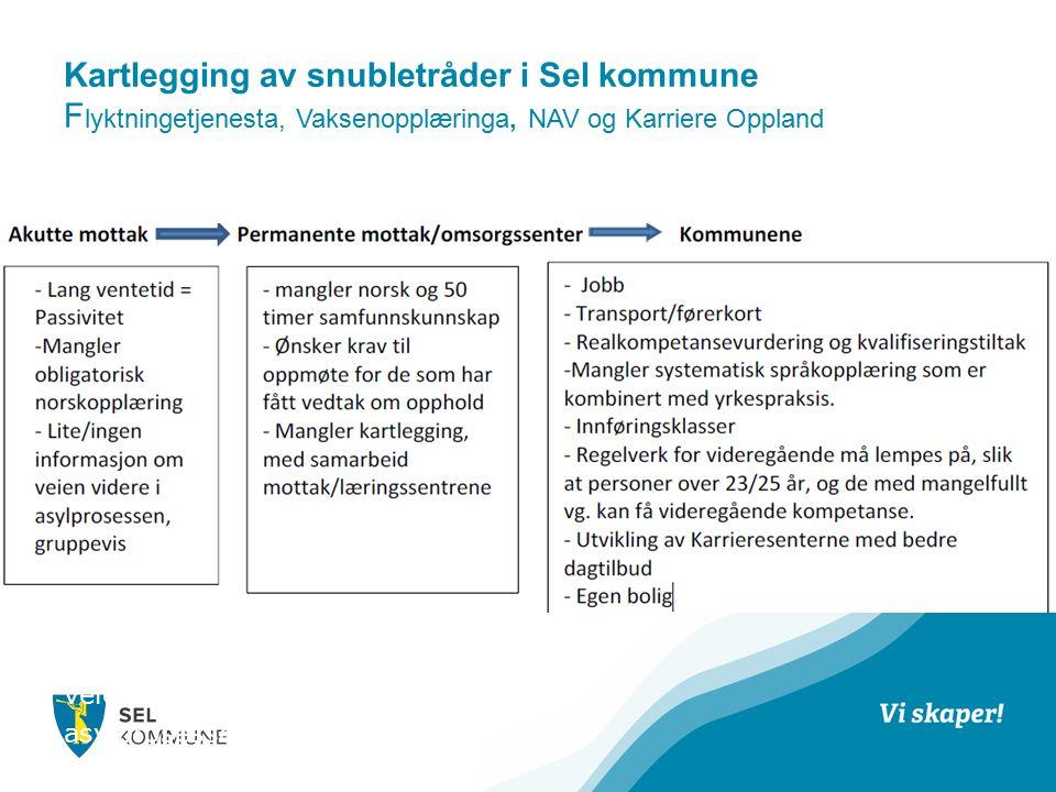 Kartlegging av snubletråder i Sel kommune F lyktningetjenesta, Vaksenopplæringa, NAV og Karriere Oppland SNUBLETRÅDER som hemmer integrering i samfunnet vårt.
