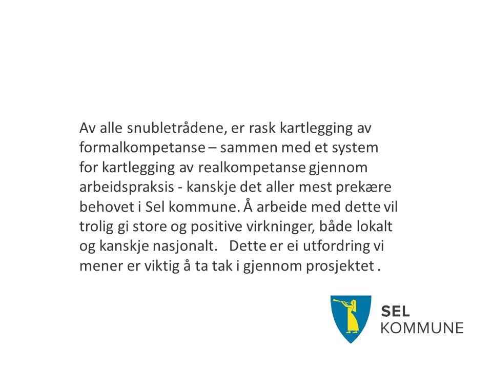 Av alle snubletrådene, er rask kartlegging av formalkompetanse – sammen med et system for kartlegging av realkompetanse gjennom arbeidspraksis - kanskje det aller mest prekære behovet i Sel kommune.