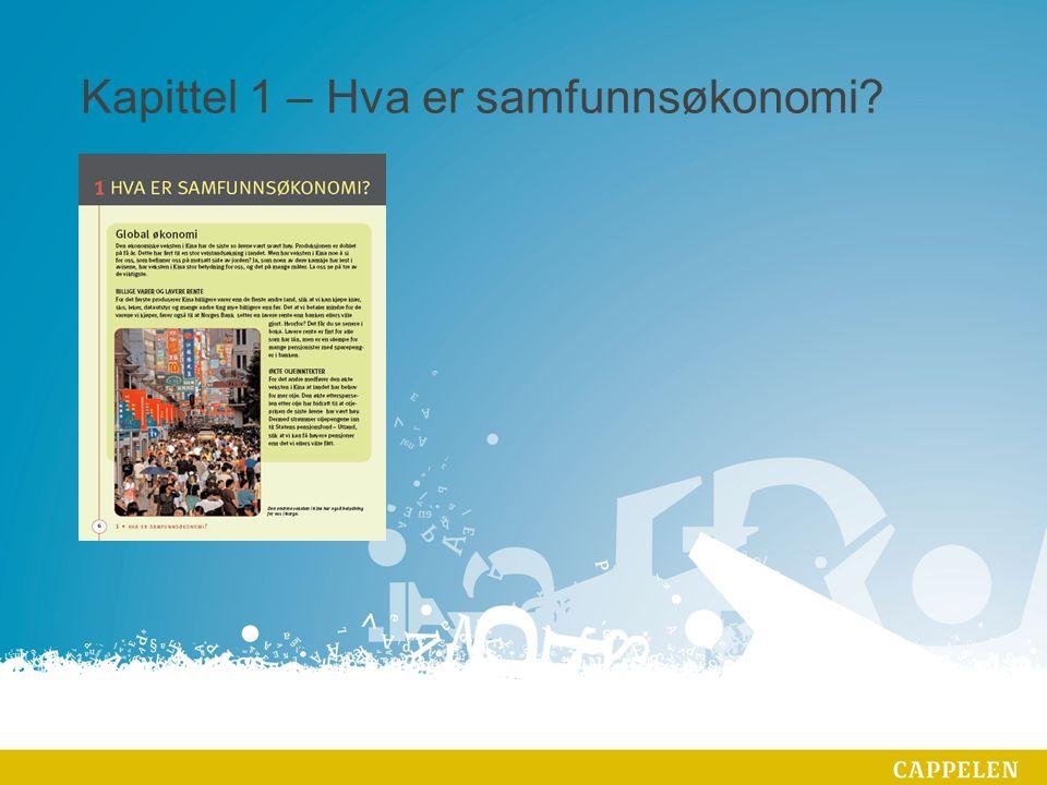 Kapittel 1 – Hva er samfunnsøkonomi