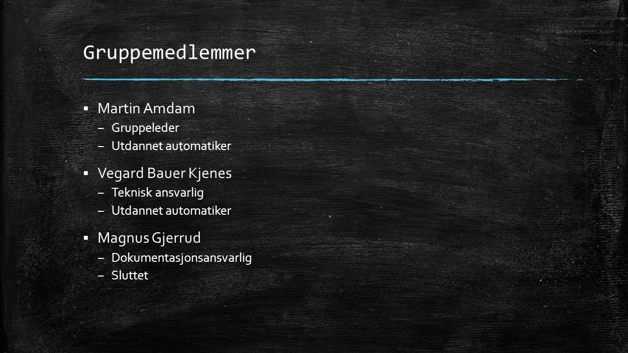 Gruppemedlemmer  Martin Amdam – Gruppeleder – Utdannet automatiker  Vegard Bauer Kjenes – Teknisk ansvarlig – Utdannet automatiker  Magnus Gjerrud
