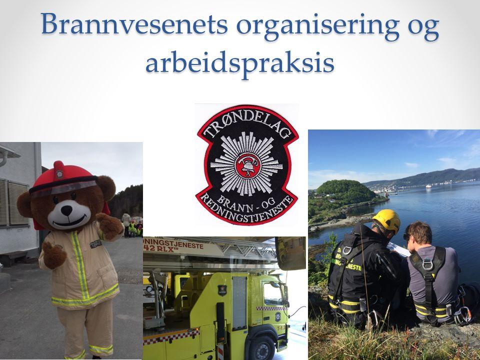 Brannvesenets organisering og arbeidspraksis