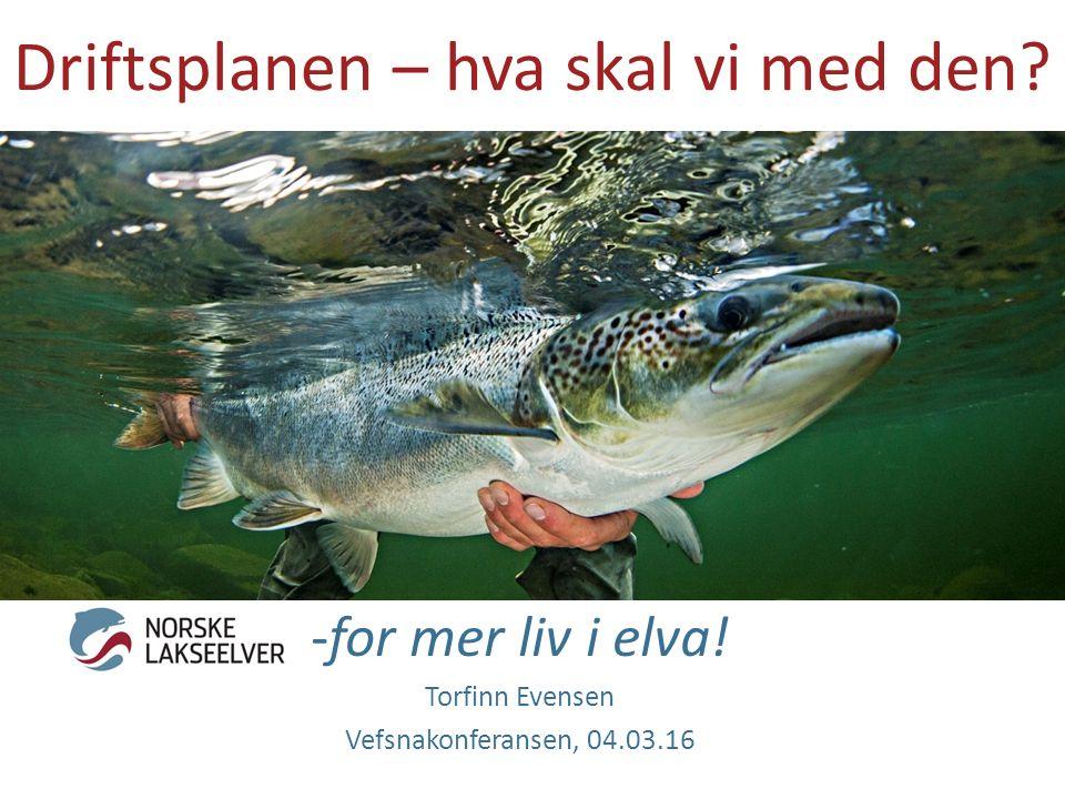 Driftsplanen – hva skal vi med den? -for mer liv i elva! Torfinn Evensen Vefsnakonferansen, 04.03.16