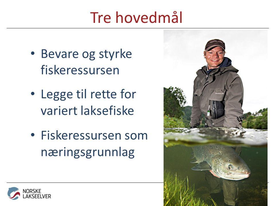 Tre hovedmål Bevare og styrke fiskeressursen Legge til rette for variert laksefiske Fiskeressursen som næringsgrunnlag - for mer liv i elva!