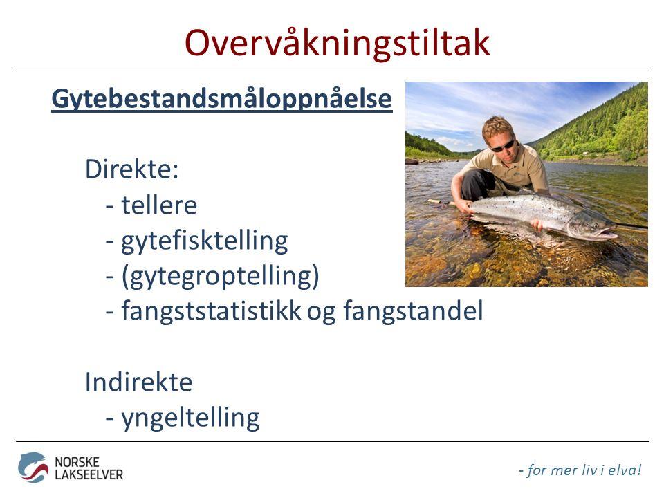 Overvåkningstiltak - for mer liv i elva! Gytebestandsmåloppnåelse Direkte: - tellere - gytefisktelling - (gytegroptelling) - fangststatistikk og fangs
