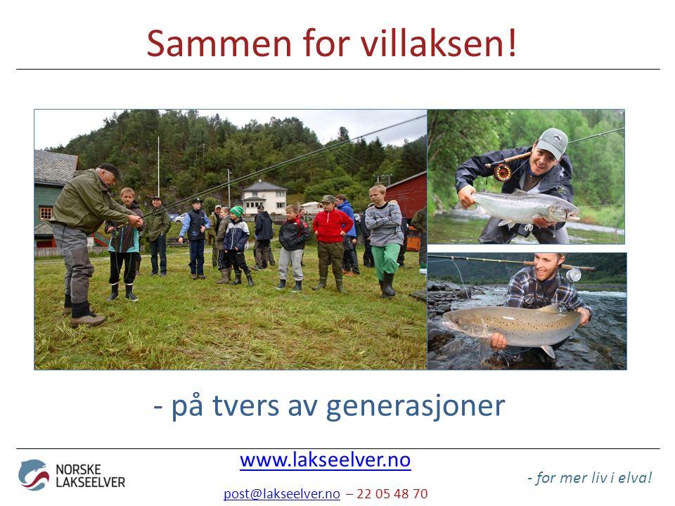 Sammen for villaksen! - for mer liv i elva! - på tvers av generasjoner www.lakseelver.no post@lakseelver.nopost@lakseelver.no – 22 05 48 70