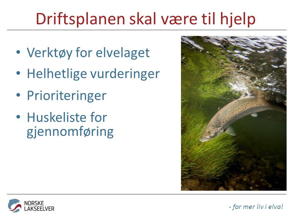Driftsplanen skal være til hjelp Verktøy for elvelaget Helhetlige vurderinger Prioriteringer Huskeliste for gjennomføring - for mer liv i elva!