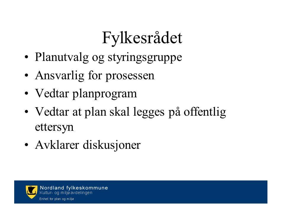 Fylkesrådet Planutvalg og styringsgruppe Ansvarlig for prosessen Vedtar planprogram Vedtar at plan skal legges på offentlig ettersyn Avklarer diskusjoner