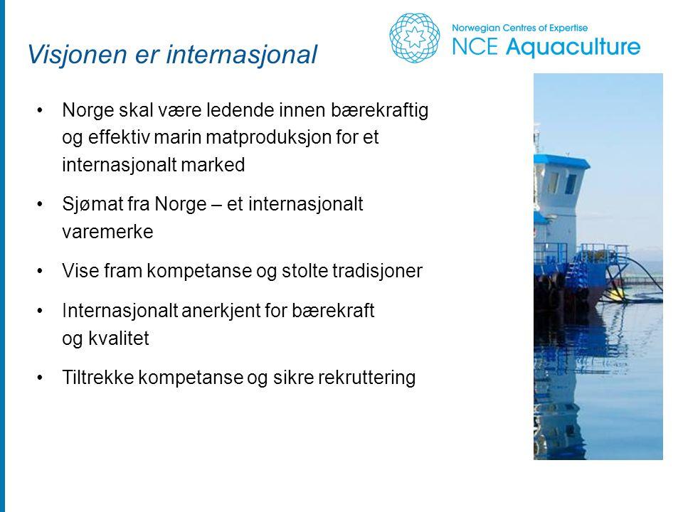 Visjonen er internasjonal Norge skal være ledende innen bærekraftig og effektiv marin matproduksjon for et internasjonalt marked Sjømat fra Norge – et internasjonalt varemerke Vise fram kompetanse og stolte tradisjoner Internasjonalt anerkjent for bærekraft og kvalitet Tiltrekke kompetanse og sikre rekruttering Foto: Frank Gregersen, Fiskeriforskning