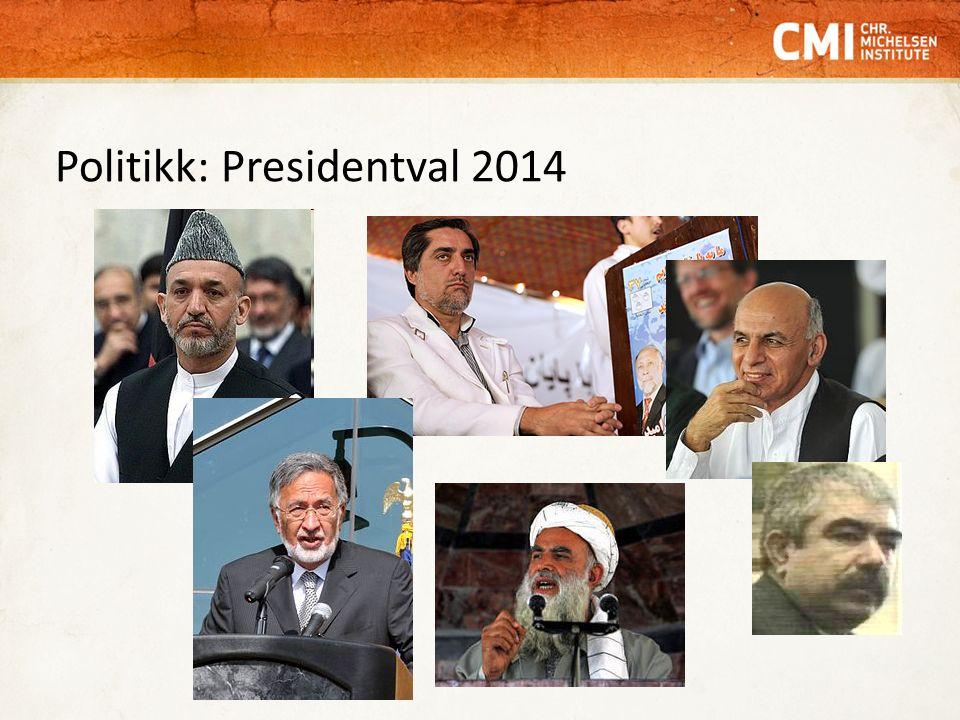 Politikk: Presidentval 2014