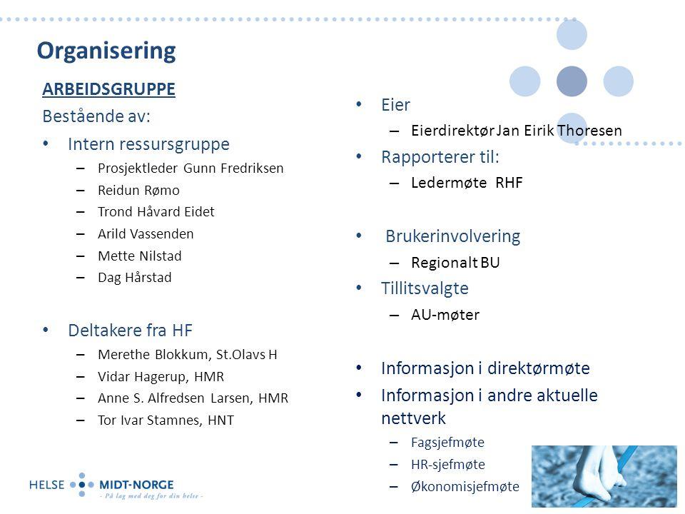 Organisering ARBEIDSGRUPPE Bestående av: Intern ressursgruppe – Prosjektleder Gunn Fredriksen – Reidun Rømo – Trond Håvard Eidet – Arild Vassenden – M