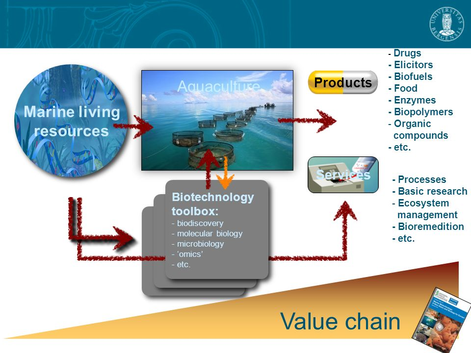 Marine living resources Products Services Value chain - Drugs - Elicitors - Biofuels - Food - Enzymes - Biopolymers - Organic compounds - etc.