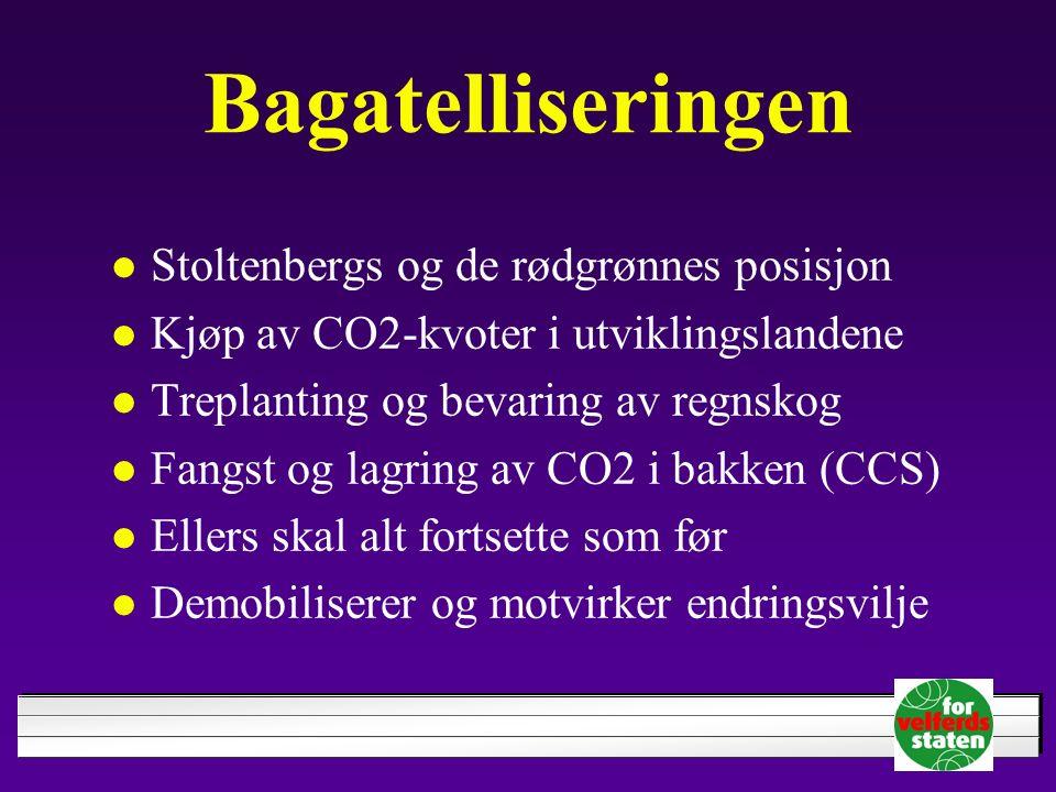 Bagatelliseringen Stoltenbergs og de rødgrønnes posisjon Kjøp av CO2-kvoter i utviklingslandene Treplanting og bevaring av regnskog Fangst og lagring av CO2 i bakken (CCS) Ellers skal alt fortsette som før Demobiliserer og motvirker endringsvilje