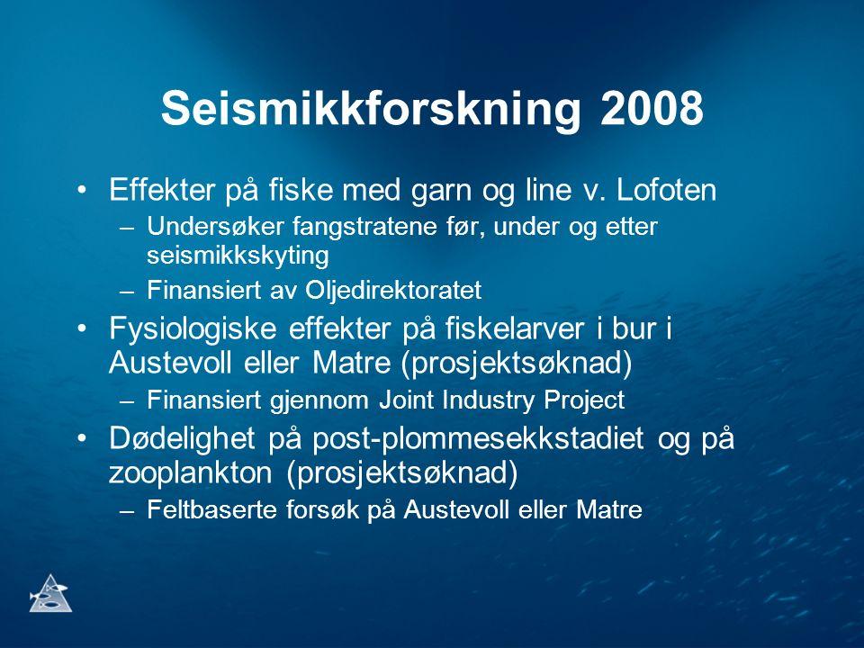 Seismikkforskning 2008 Effekter på fiske med garn og line v. Lofoten –Undersøker fangstratene før, under og etter seismikkskyting –Finansiert av Oljed