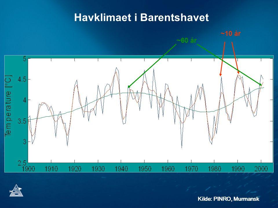 Kilde: PINRO, Murmansk ~10 år ~60 år Havklimaet i Barentshavet