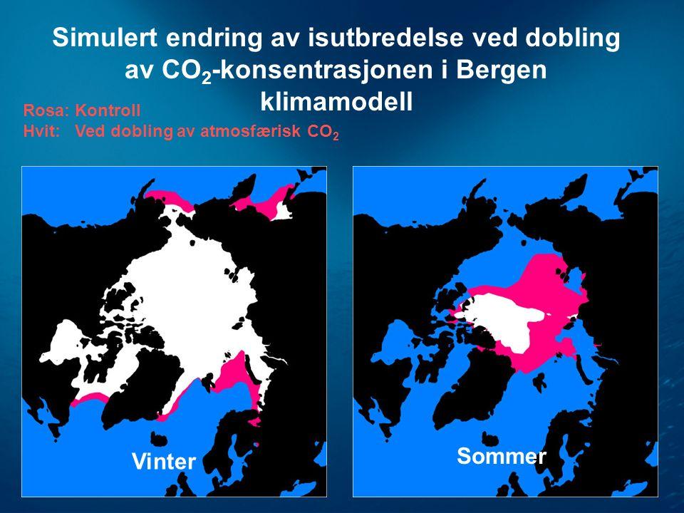 Simulert endring av isutbredelse ved dobling av CO 2 -konsentrasjonen i Bergen klimamodell Rosa: Kontroll Hvit: Ved dobling av atmosfærisk CO 2 Vinter