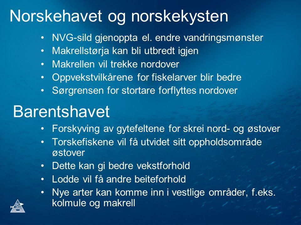 Norskehavet og norskekysten NVG-sild gjenoppta el. endre vandringsmønster Makrellstørja kan bli utbredt igjen Makrellen vil trekke nordover Oppvekstvi