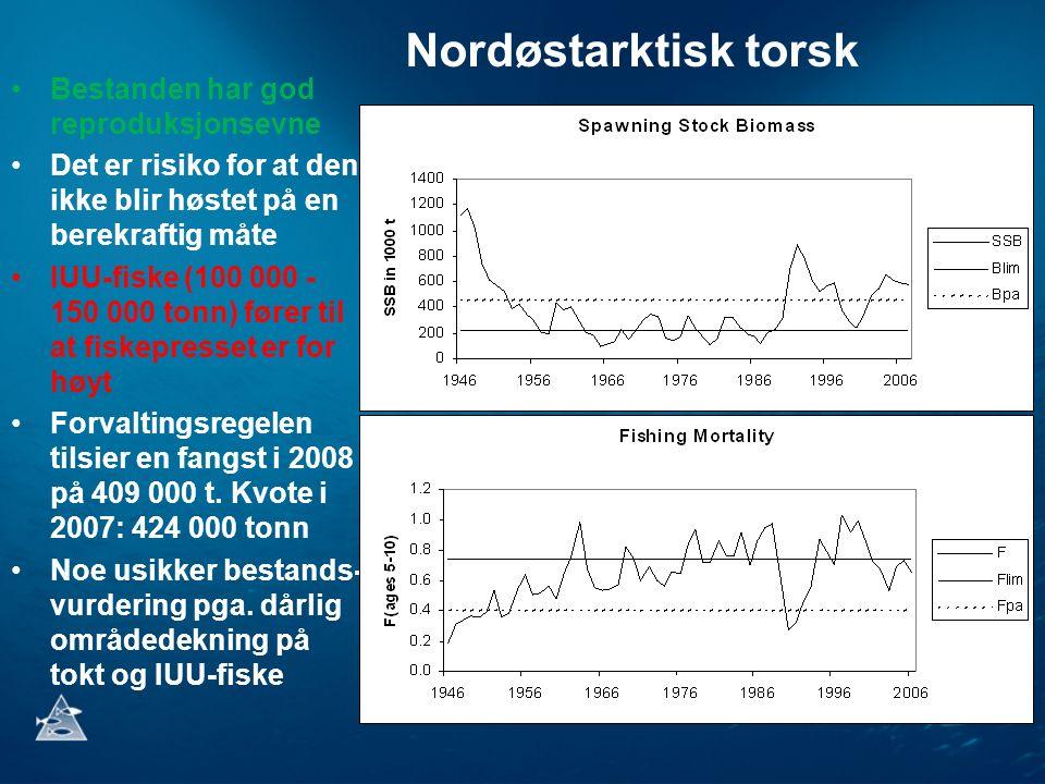 Bestanden har god reproduksjonsevne Det er risiko for at den ikke blir høstet på en berekraftig måte IUU-fiske (100 000 - 150 000 tonn) fører til at fiskepresset er for høyt Forvaltingsregelen tilsier en fangst i 2008 på 409 000 t.