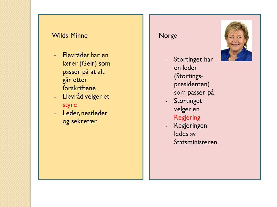 Wilds MinneNorge -Elevrådet har en lærer (Geir) som passer på at alt går etter forskriftene -Elevråd velger et styre -Leder, nestleder og sekretær -St