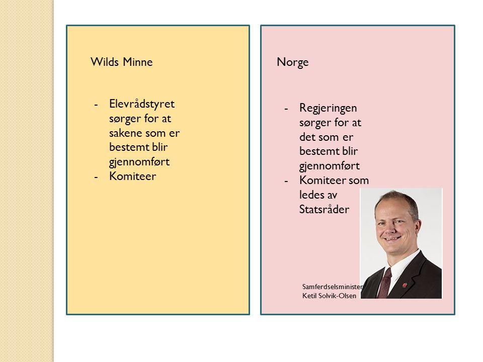 Wilds MinneNorge -Elevrådstyret sørger for at sakene som er bestemt blir gjennomført -Komiteer -Regjeringen sørger for at det som er bestemt blir gjen