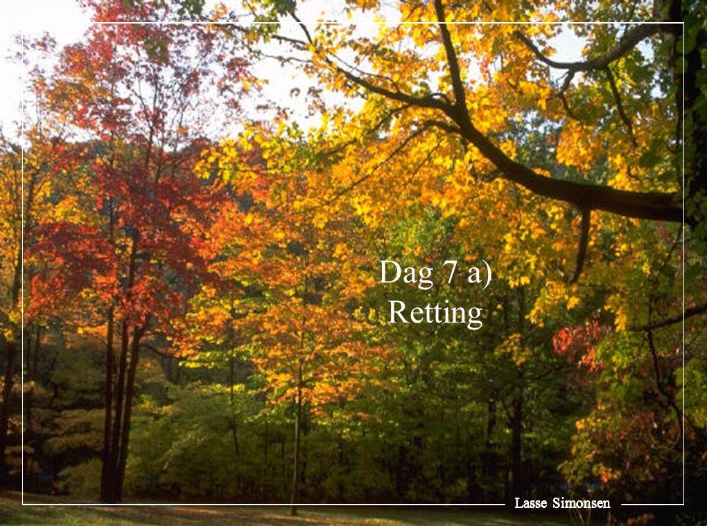 Lasse Simonsen Vilkårene for Ds utbedringsrett: Utbedringsrett Tilbud Øvrige vilkår Øvrige vilkår Urimeleg ulempe Urimeleg ulempe Særlige grunner Særlige grunner Avhl § 4-10 (1) Rt 2006 side 999 Rt 2006 side 1076 Ot prp = f eks flytte Alternativer Ot prp = f eks tidligere mislykkede forsøk Innen rimelig tid Innen rimelig tid Avhl § 4-10 (3)