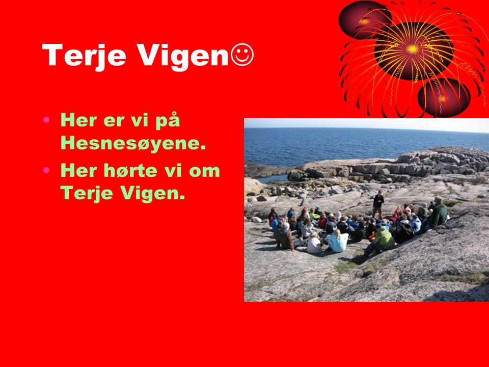 Terje Vigen Her er vi på Hesnesøyene. Her hørte vi om Terje Vigen.