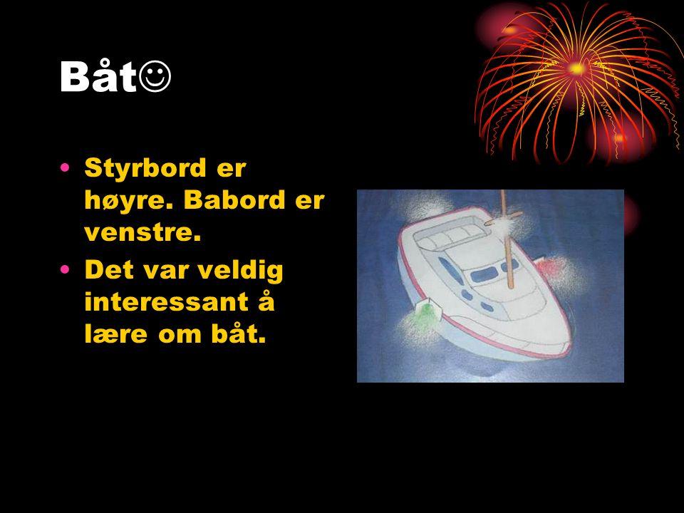 Båt Styrbord er høyre. Babord er venstre. Det var veldig interessant å lære om båt.