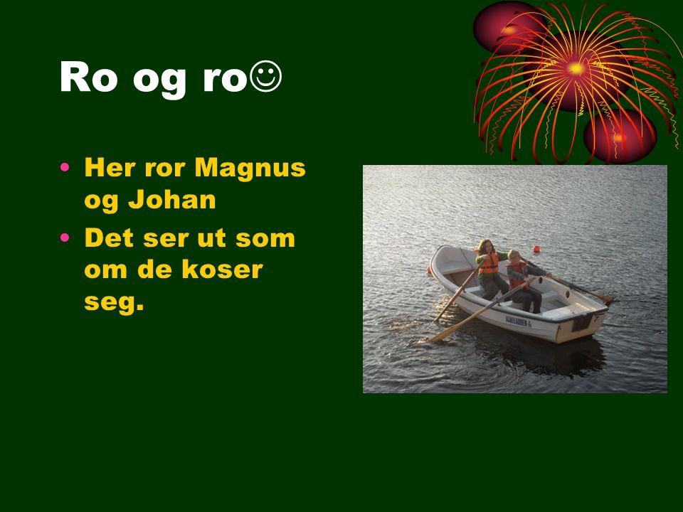 Ro og ro Her ror Magnus og Johan Det ser ut som om de koser seg.