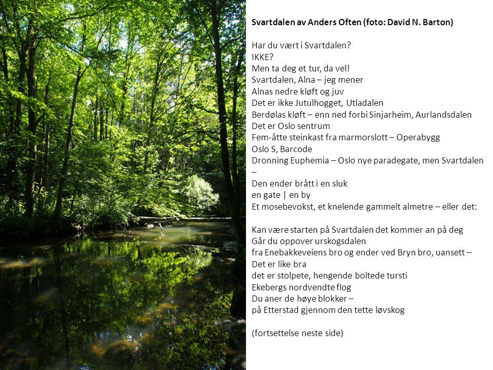 Svartdalen av Anders Often (foto: David N. Barton) Har du vært i Svartdalen.