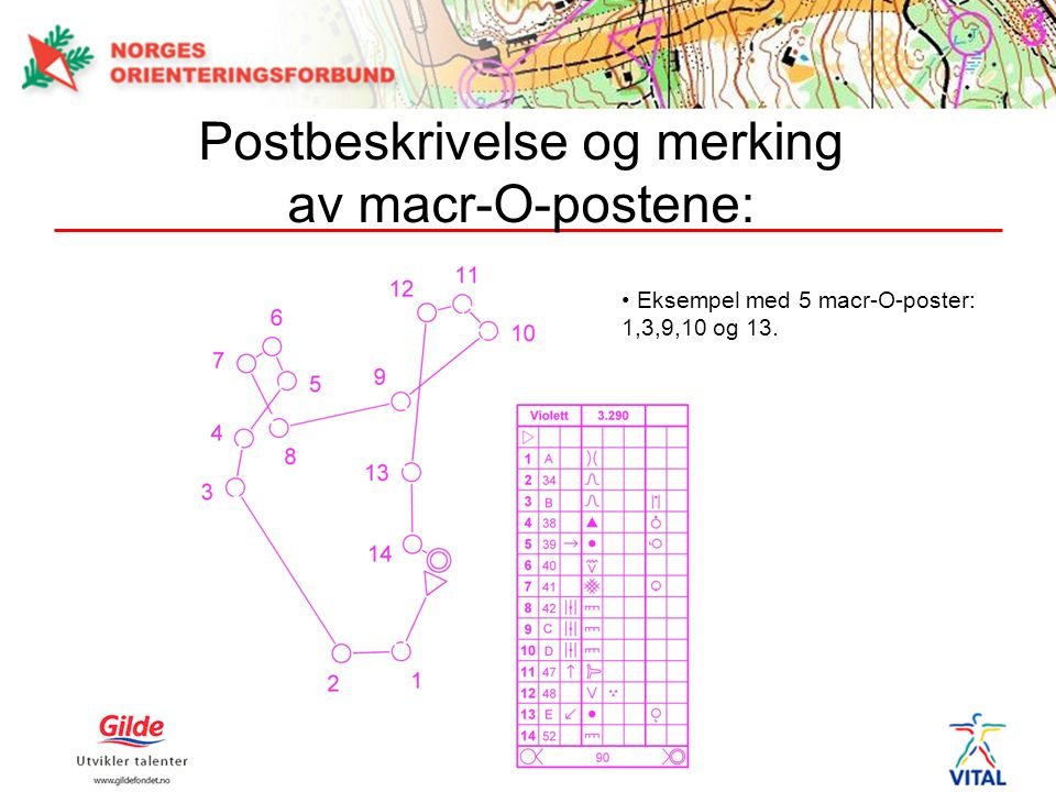 Postbeskrivelse og merking av macr-O-postene: Eksempel med 5 macr-O-poster: 1,3,9,10 og 13.