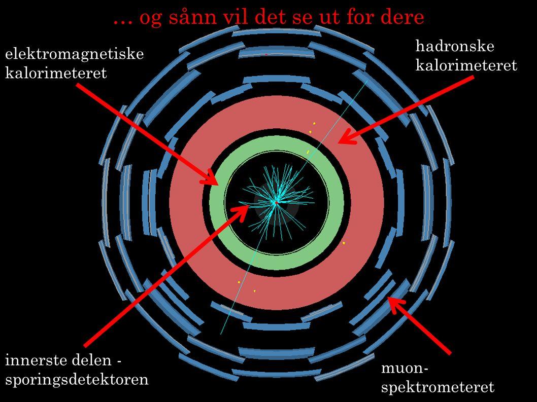 18 innerste delen - sporingsdetektoren elektromagnetiske kalorimeteret hadronske kalorimeteret muon- spektrometeret … og sånn vil det se ut for dere