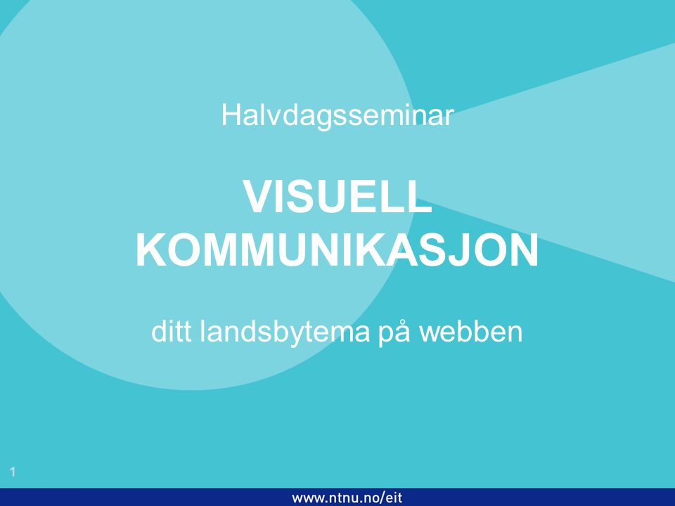 1 EiT 2006/2007 Halvdagsseminar VISUELL KOMMUNIKASJON ditt landsbytema på webben