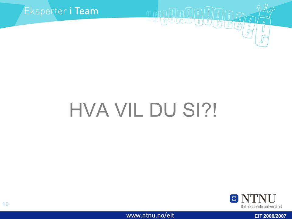 10 EiT 2006/2007 HVA VIL DU SI !