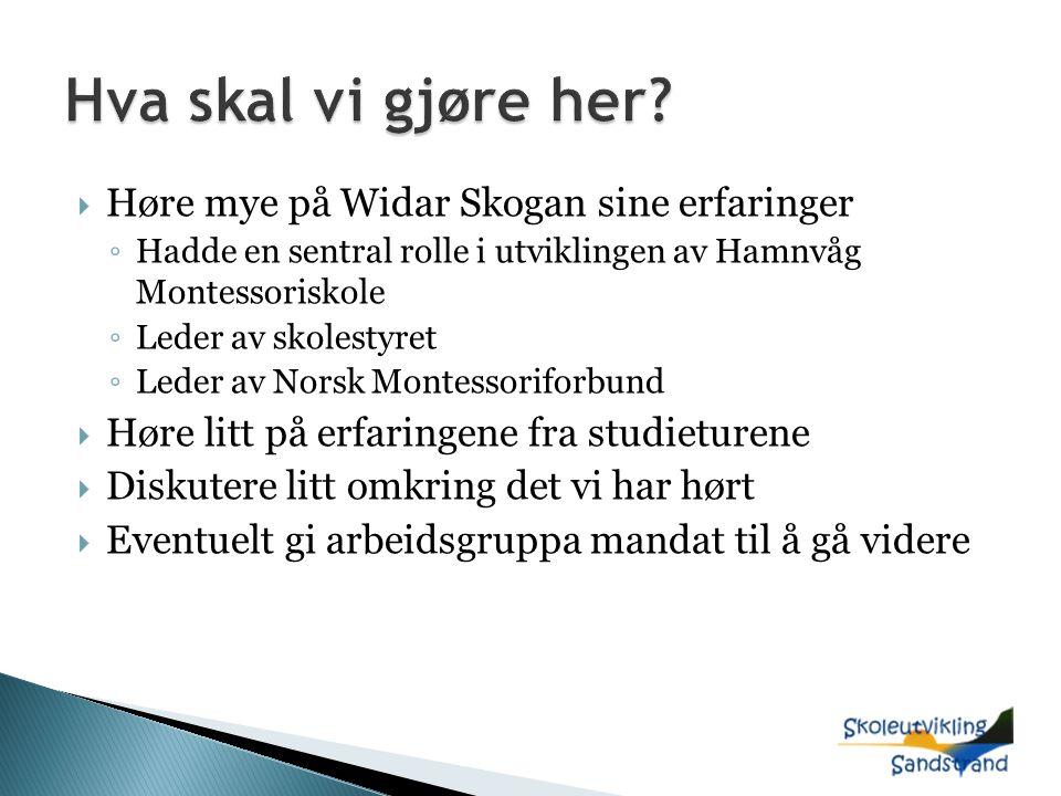  Høre mye på Widar Skogan sine erfaringer ◦ Hadde en sentral rolle i utviklingen av Hamnvåg Montessoriskole ◦ Leder av skolestyret ◦ Leder av Norsk Montessoriforbund  Høre litt på erfaringene fra studieturene  Diskutere litt omkring det vi har hørt  Eventuelt gi arbeidsgruppa mandat til å gå videre