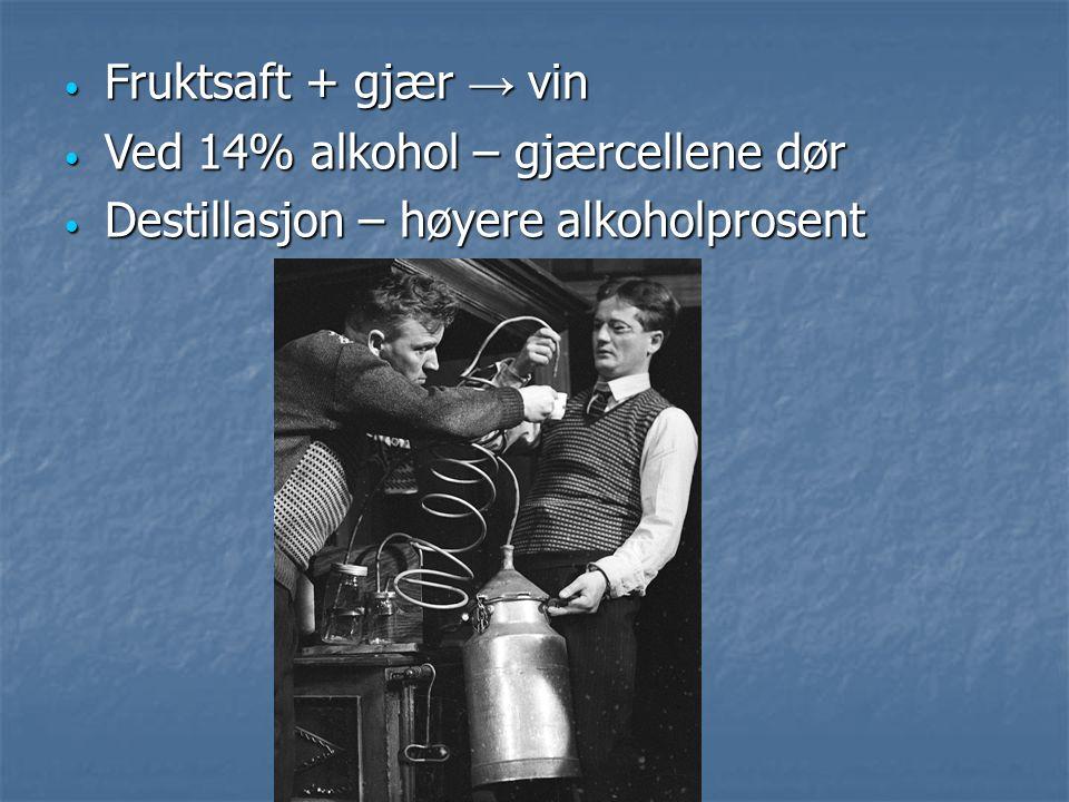 Fruktsaft + gjær → vin Fruktsaft + gjær → vin Ved 14% alkohol – gjærcellene dør Ved 14% alkohol – gjærcellene dør Destillasjon – høyere alkoholprosent Destillasjon – høyere alkoholprosent