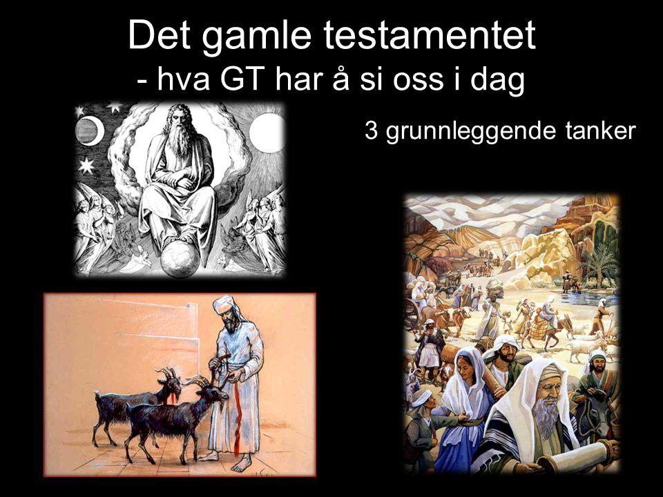 Synd – Offer - Soning Synd: Brudd på Guds bud/ vilje Å ikke gjøre det gode Avsette Gud som Herre Noe(n) i tillegg til Herren.