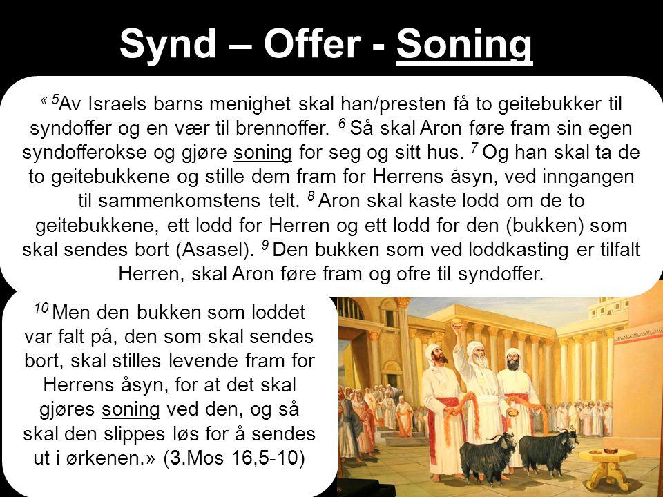 Synd – Offer - Soning « 5 Av Israels barns menighet skal han/presten få to geitebukker til syndoffer og en vær til brennoffer.