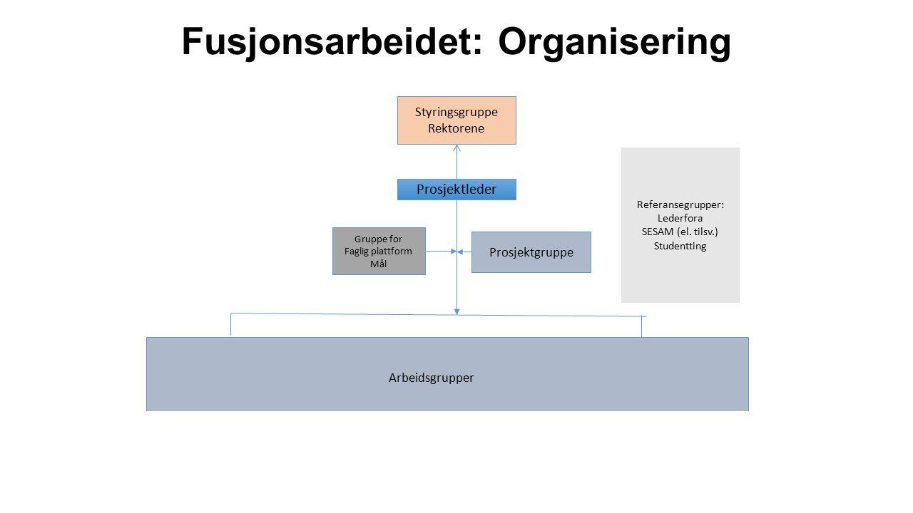 Fusjonsarbeidet: Organisering Styringsgruppe Rektorene Prosjektgruppe Referansegrupper: Lederfora SESAM (el.