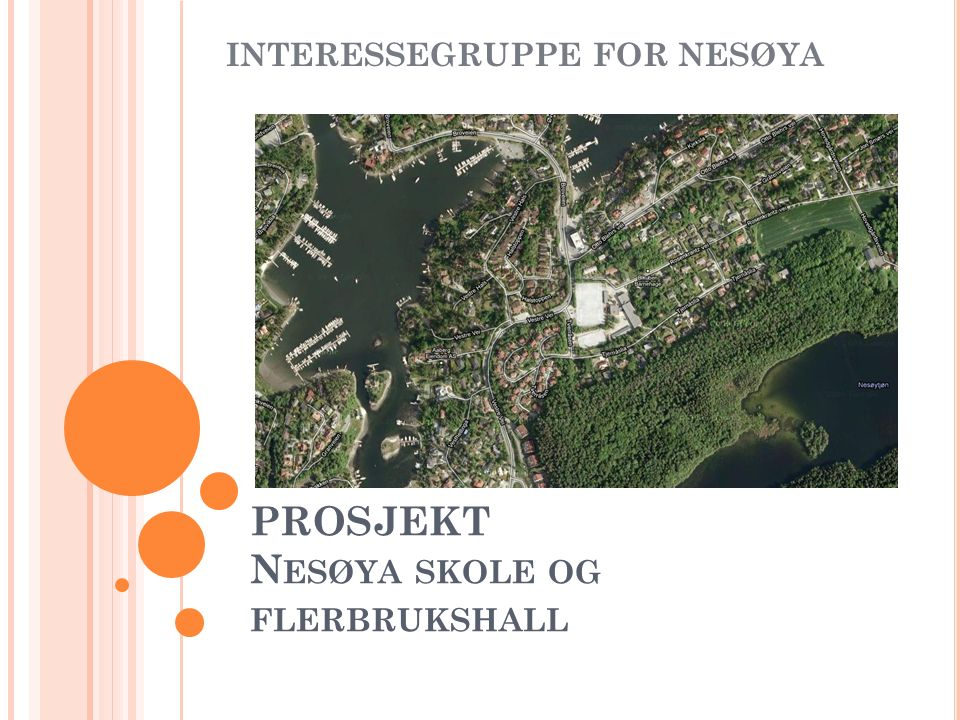 PROSJEKT N ESØYA SKOLE OG FLERBRUKSHALL INTERESSEGRUPPE FOR NESØYA