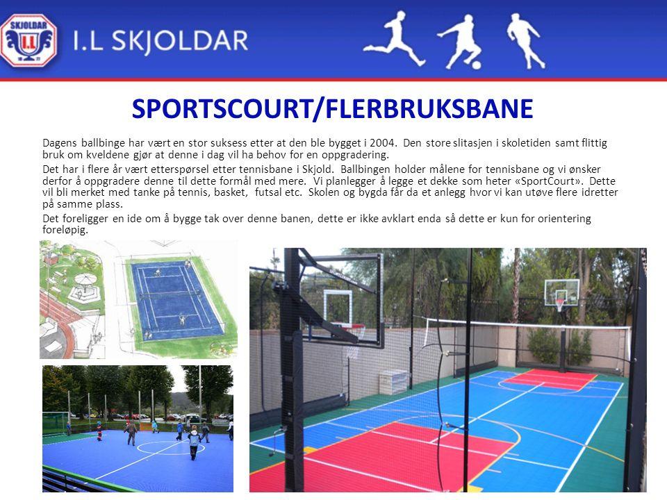 SPORTSCOURT/FLERBRUKSBANE Dagens ballbinge har vært en stor suksess etter at den ble bygget i 2004.