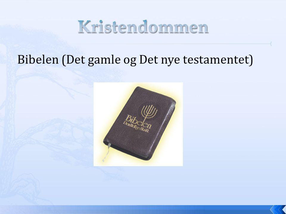 Bibelen (Det gamle og Det nye testamentet)